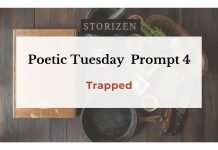 poetic-tuesday-prompt-4-trapped