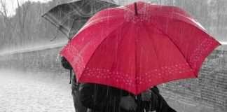 Rain-kissed-love...