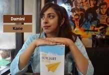 The-Sunlight-Plane-by-Damini-Kane